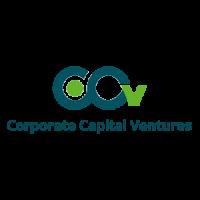 CCVIndia – Corporate Capital Ventures Pvt. Ltd.