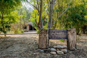 Wildlife Resort in Jim Corbett