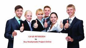 Buy Readymade MBA Final Year Projects