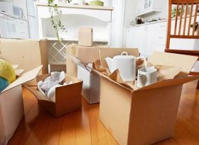 Balaji - Best packers and movers in Chandigarh
