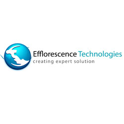 Efflorescence Technologies Pvt.  Ltd.