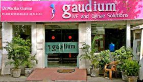 Gaudium IVF Centre