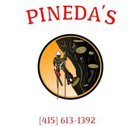 Pineda's Tree Service