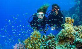 BondSafari Scuba Diving