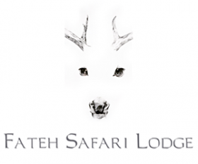 Fateh Safari Lodge