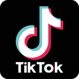 Download Tik Tok Video Without Watermark online