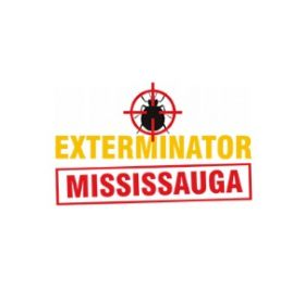 Bed Bug Exterminator Mississauga
