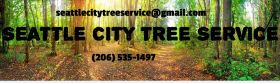 Seattle City Tree Service