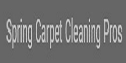 Spring Carpet Cleaning Pros