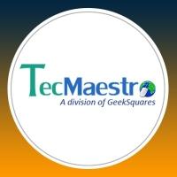 TecMaestro IT Services