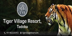Tiger Village Resorts