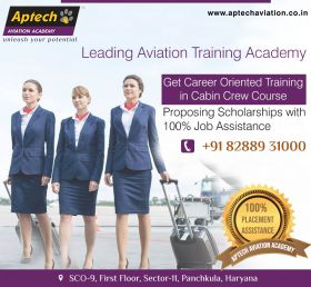 aviation academy panchkula