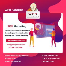 Web Pandits