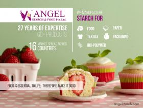 Angel Starch and Food Private Limited