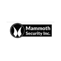 Mammoth Security Inc. Norwalk