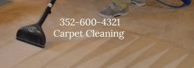 Carpet Cleaning 352