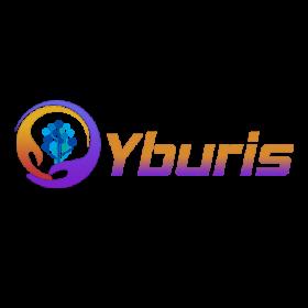 Yburis Infotech Pvt. Ltd.