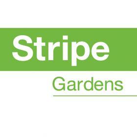 Stripe Gardens