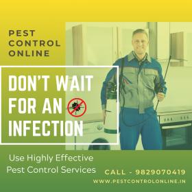 Pest Control Online