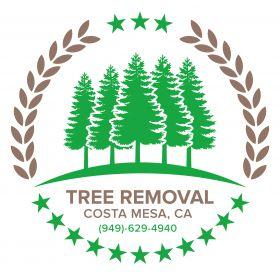 Tree Removal Costa Mesa