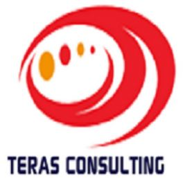 TerasConsulting