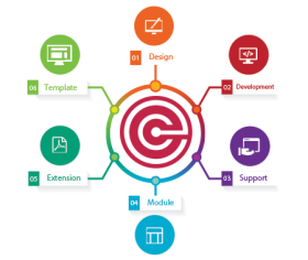 Website designing company - viv softech