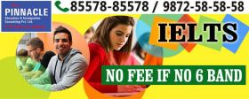 Pinnacle Education & Immigration Consulting Pvt. Ltd.