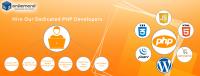 Hire Website Developer