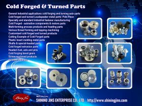 Cold Forging And Precision Machining Parts