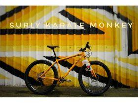 Surly Karate Monkey 27.5