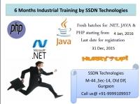 Best 6 months Industrial Training