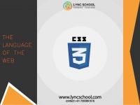 CSS Training LYNC SCHOOL