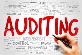 Internal and management audits