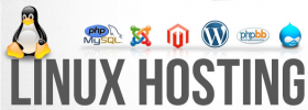 Cheap Web Hosting Company in Chennai