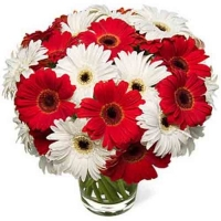 Send flowers to banglore