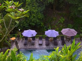 Bali best price honeymoon package 3 nights 4 days