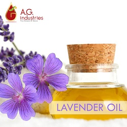 Lavender Oil Suppliers