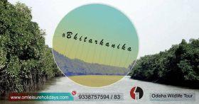 3 Nights/4 Days Wildlife Odisha Bhitarkanika Trip