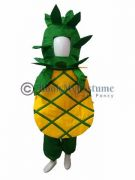 choose your favourite fruits costumes for kids