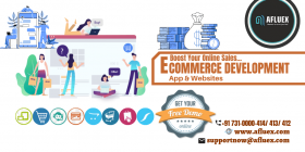 Ecommerce Software And Website Development Company