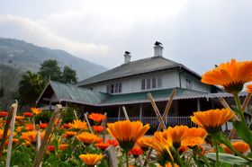 Darjeeling Tea Garden Resort