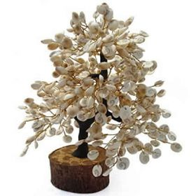 Gomati Chakra Tree – Good Luck Gift for Home