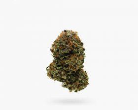 Buy Purple OG (AAA) Flower in Hamilton | Visit Sto
