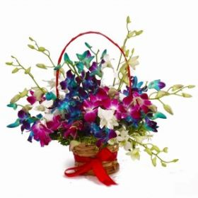 Colorful Fifteen Orchids Arrangement