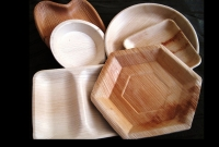Areca Leaf Tableware - Areca Plates Making Machine