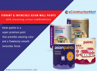 Asian paints & Nerolac Paints