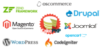Professional Website Designing & Web Development