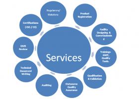 Alpine Quality Medical, CDSCO, Consultants