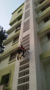 bird netting services in pune