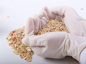Grains Testing